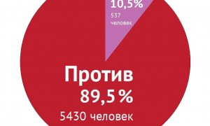 Народ России не поддержал законопроект о семейно-бытовом насилии