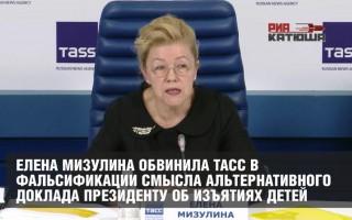 Елена Мизулина обвинила ТАСС в фальсификации смысла Альтернативного доклада Президенту об изъятиях детей
