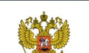 Обращение родительской общественности к Премьер-министру РФ по закону о семейно-бытовом насилии