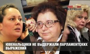 Ювенальщики не выдержали парламентских выражений