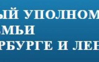 Комитет Думы по образованию лоббирует закон о «Контингенте»